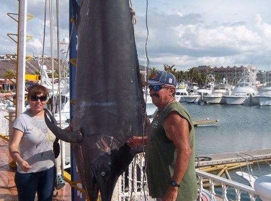 600 pd Black Marlin 8-2012